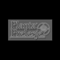 PLANTA PRELESJE